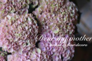 紫陽花:アンティーク